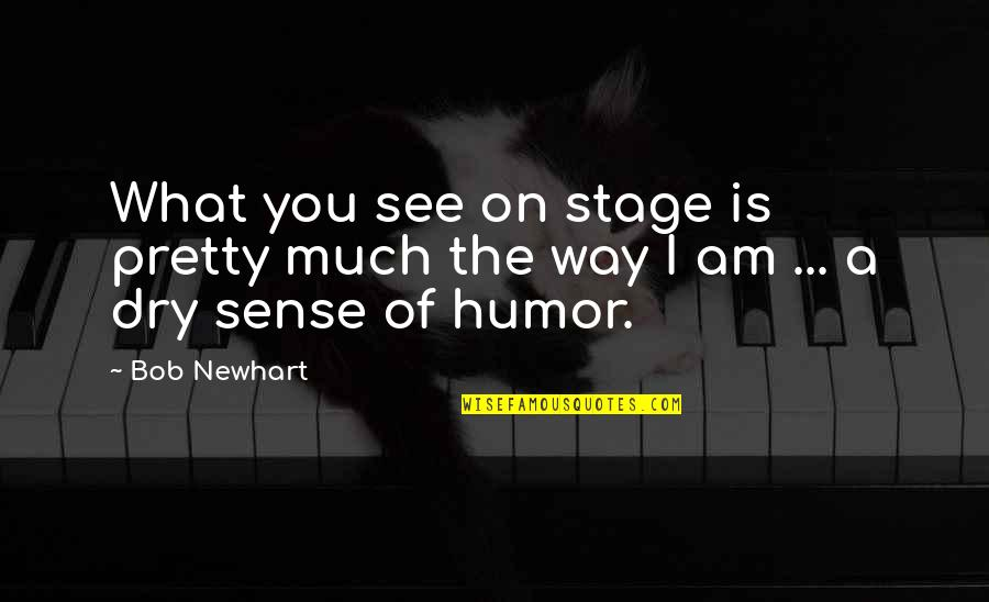 What You See Quotes By Bob Newhart: What you see on stage is pretty much