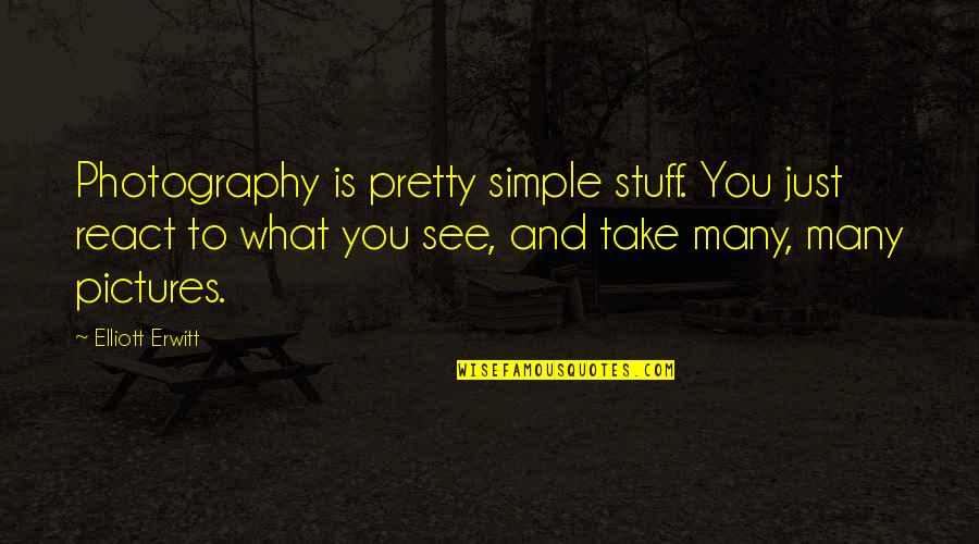 What You See Quotes By Elliott Erwitt: Photography is pretty simple stuff. You just react