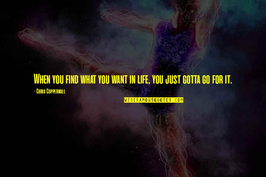 What You Want In Life Quotes By Chris Coppernoll: When you find what you want in life,