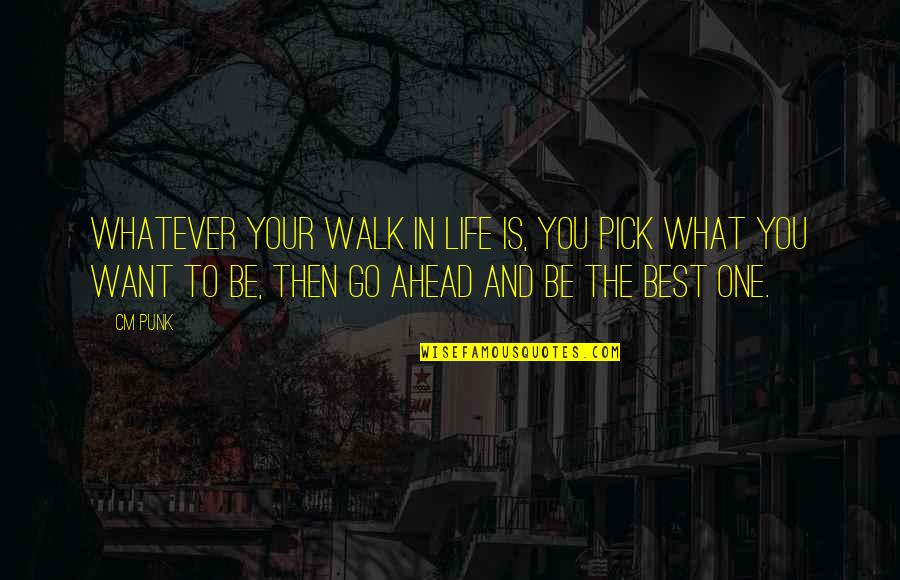 What You Want In Life Quotes By CM Punk: Whatever your walk in life is, you pick
