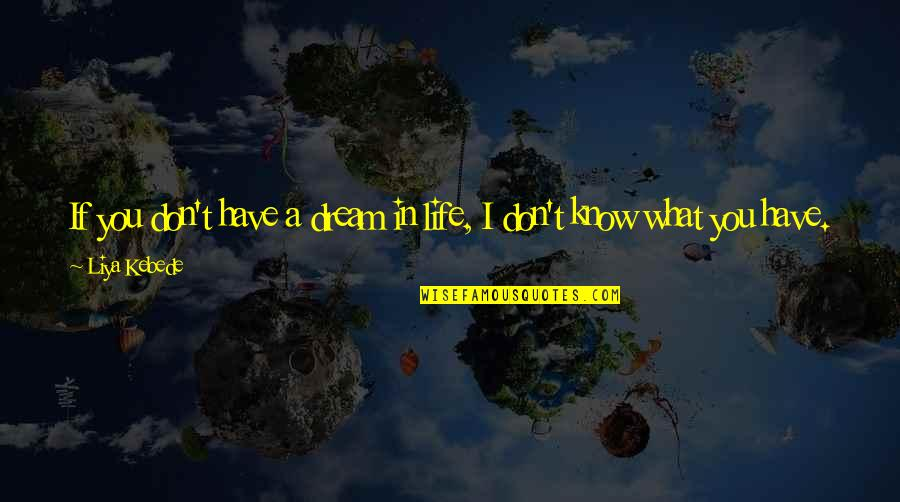 What You Want In Life Quotes By Liya Kebede: If you don't have a dream in life,