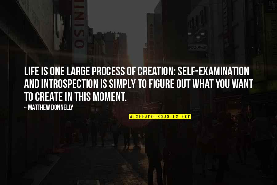 What You Want In Life Quotes By Matthew Donnelly: Life is one large process of creation: Self-Examination