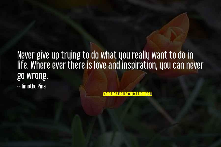 What You Want In Life Quotes By Timothy Pina: Never give up trying to do what you
