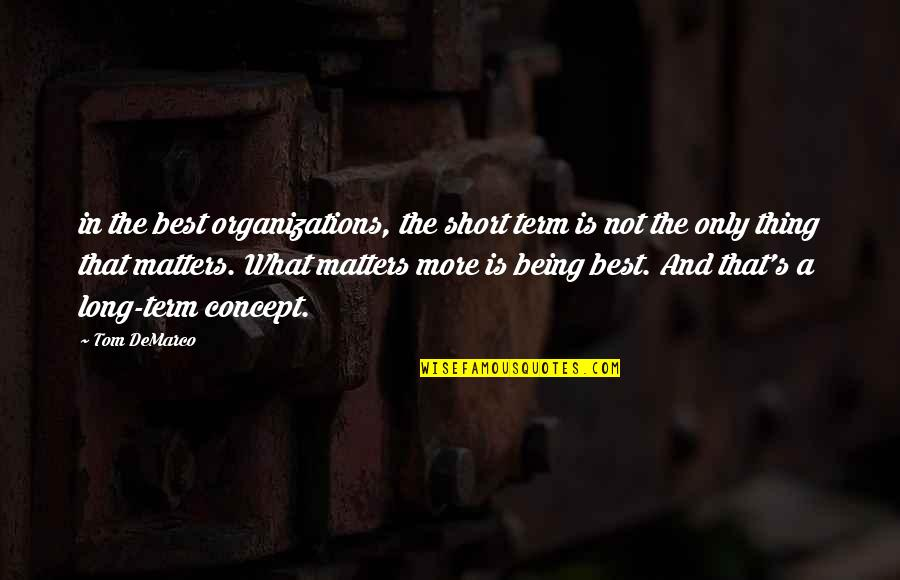 What's Best Quotes By Tom DeMarco: in the best organizations, the short term is