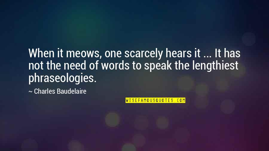When Not To Speak Quotes By Charles Baudelaire: When it meows, one scarcely hears it ...
