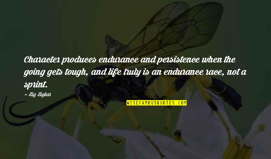 When The Going Gets Tough Quotes By Zig Ziglar: Character produces endurance and persistence when the going