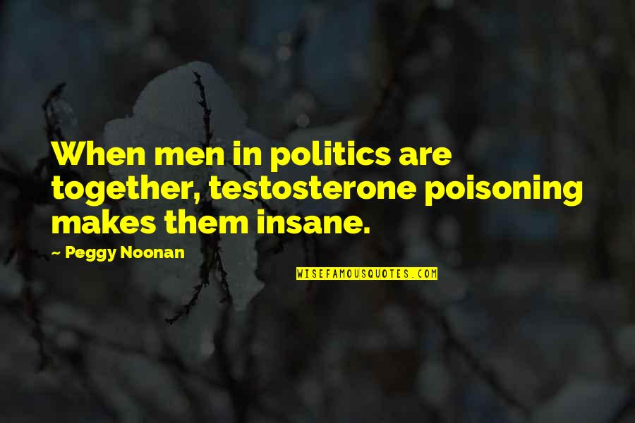 When We Not Together Quotes By Peggy Noonan: When men in politics are together, testosterone poisoning