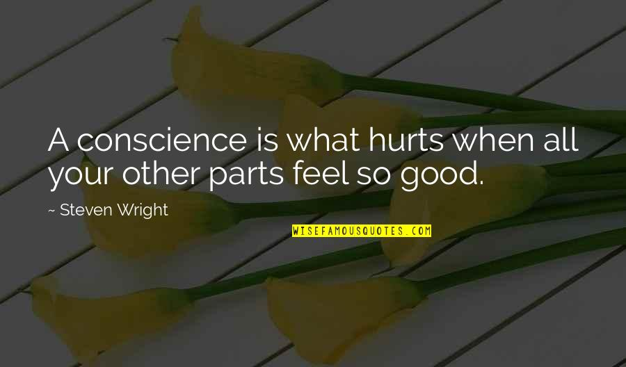 When You Feel Hurt Quotes By Steven Wright: A conscience is what hurts when all your