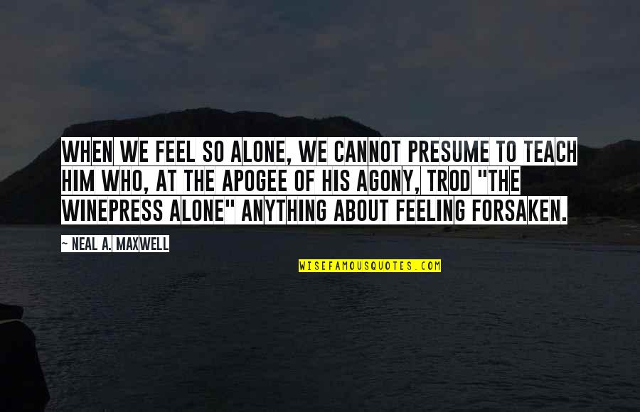When You Feel So Alone Quotes By Neal A. Maxwell: When we feel so alone, we cannot presume