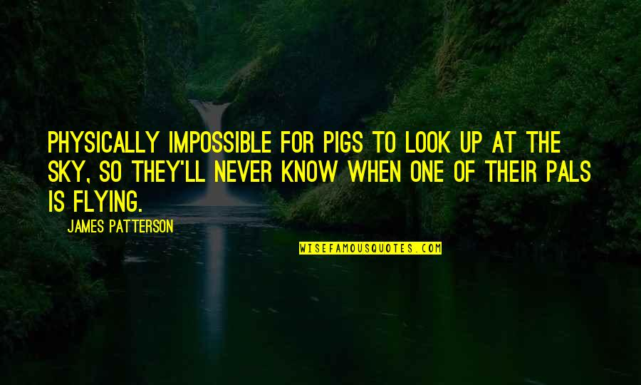When You Look Up At The Sky Quotes By James Patterson: Physically impossible for pigs to look up at