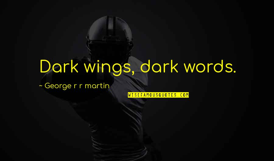 When You Need A Laugh Quotes By George R R Martin: Dark wings, dark words.