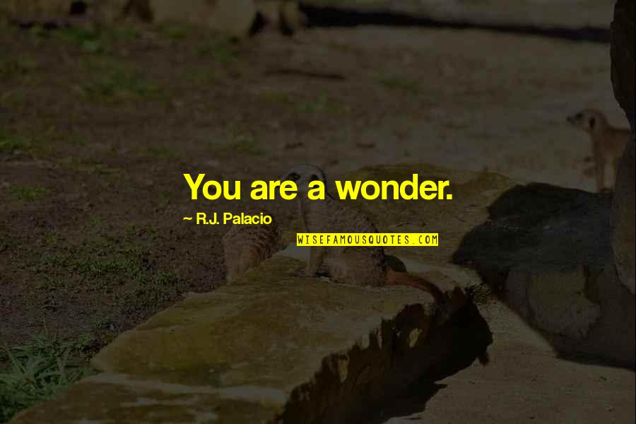 When You Need A Laugh Quotes By R.J. Palacio: You are a wonder.