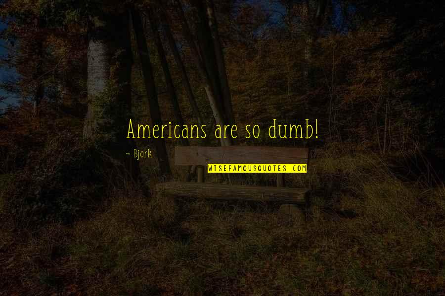 Where Did I Went Wrong Quotes By Bjork: Americans are so dumb!