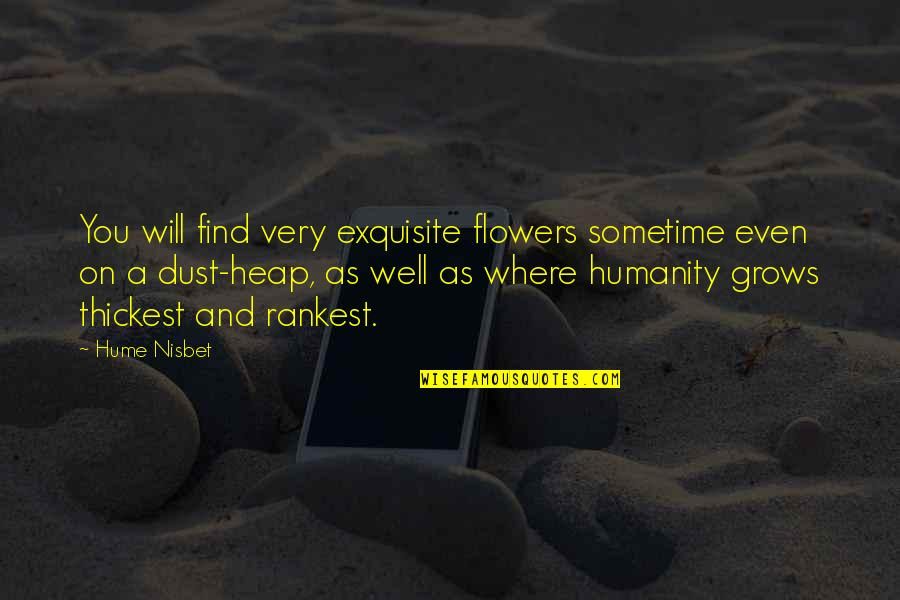 Where Is The Humanity Quotes By Hume Nisbet: You will find very exquisite flowers sometime even