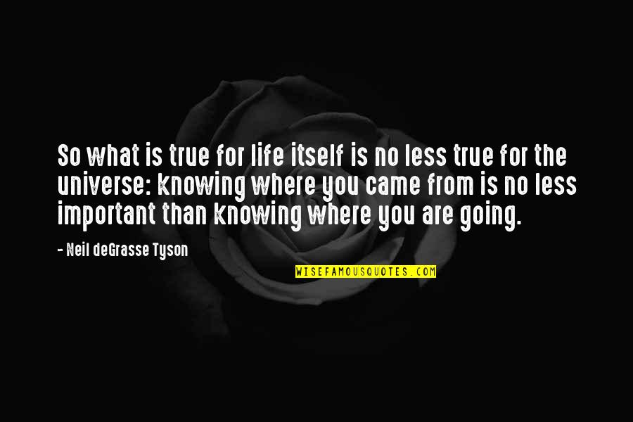 Where Life Is Going Quotes By Neil DeGrasse Tyson: So what is true for life itself is