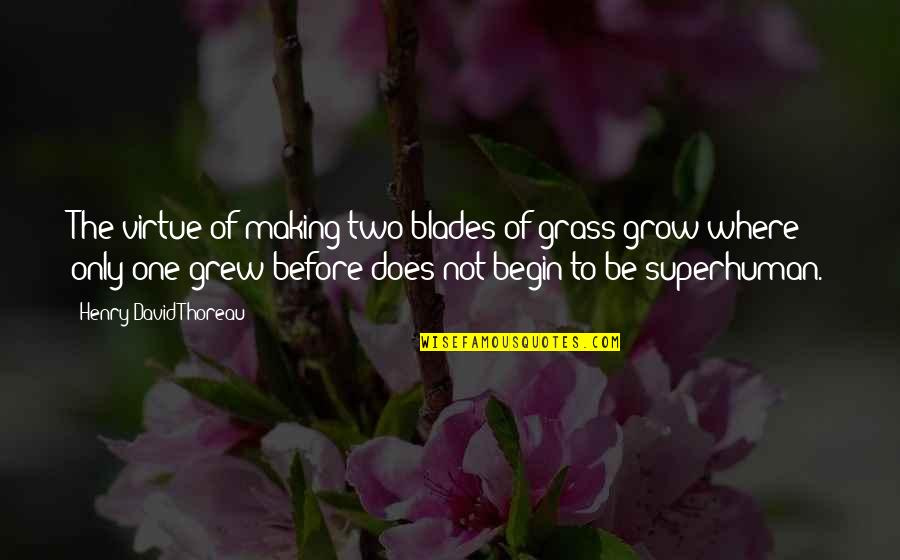 Where To Begin Quotes By Henry David Thoreau: The virtue of making two blades of grass