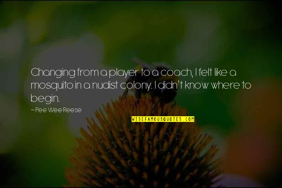 Where To Begin Quotes By Pee Wee Reese: Changing from a player to a coach, I