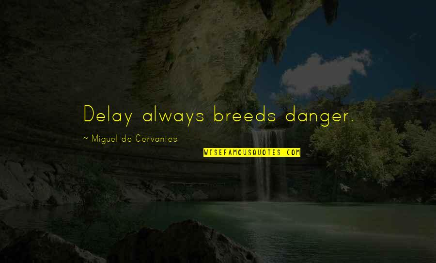 Whethersoever Quotes By Miguel De Cervantes: Delay always breeds danger.