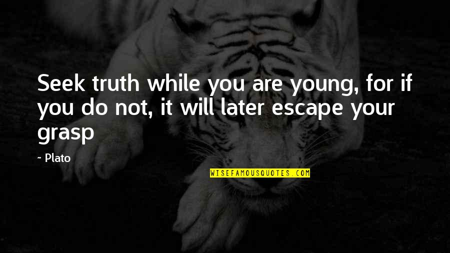 While We're Young Quotes By Plato: Seek truth while you are young, for if