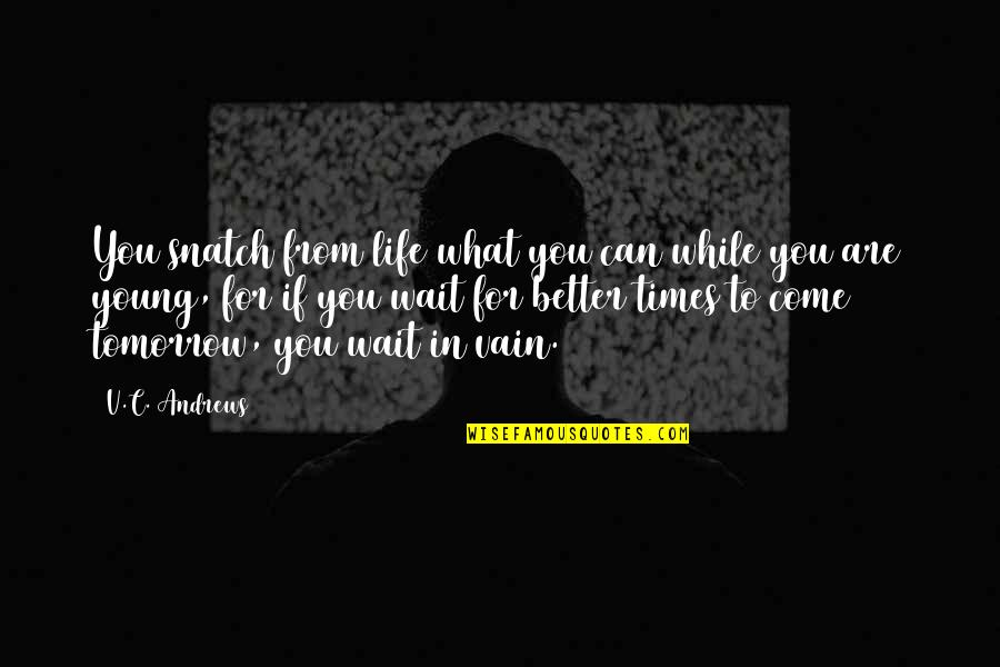 While We're Young Quotes By V.C. Andrews: You snatch from life what you can while