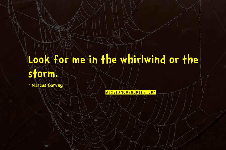 Whirlwind Quotes By Marcus Garvey: Look for me in the whirlwind or the