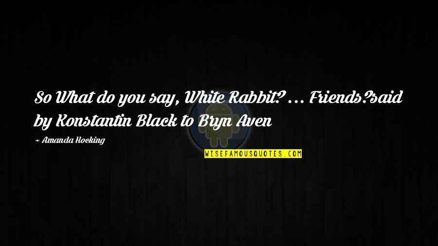 White Rabbit Quotes By Amanda Hocking: So What do you say, White Rabbit? ...