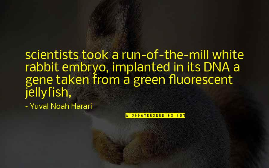 White Rabbit Quotes By Yuval Noah Harari: scientists took a run-of-the-mill white rabbit embryo, implanted