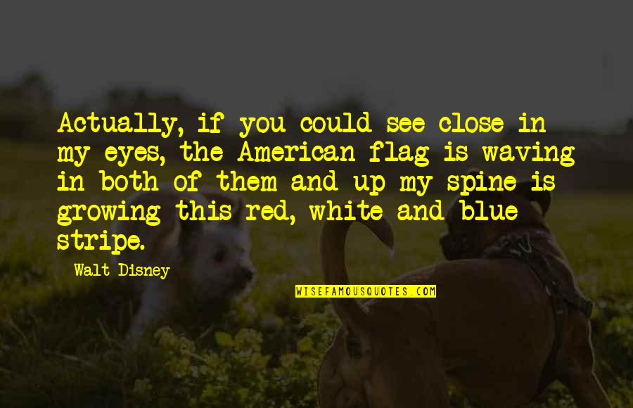 White Stripe Quotes By Walt Disney: Actually, if you could see close in my