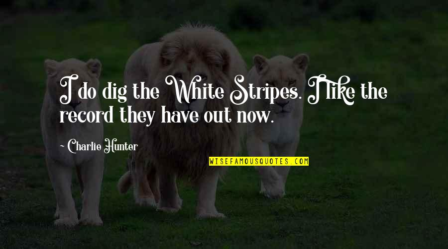White Stripes Quotes By Charlie Hunter: I do dig the White Stripes. I like