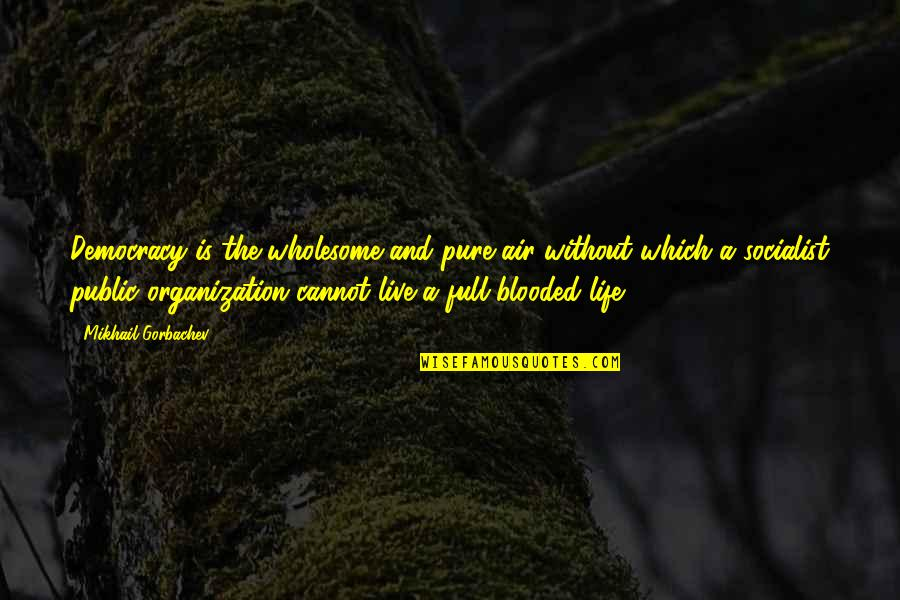 Wholesome Quotes By Mikhail Gorbachev: Democracy is the wholesome and pure air without
