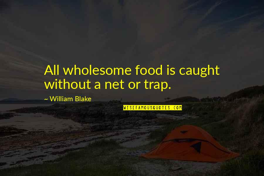 Wholesome Quotes By William Blake: All wholesome food is caught without a net