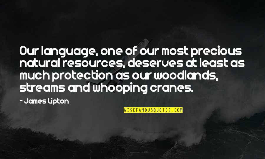 Whooping Quotes By James Lipton: Our language, one of our most precious natural