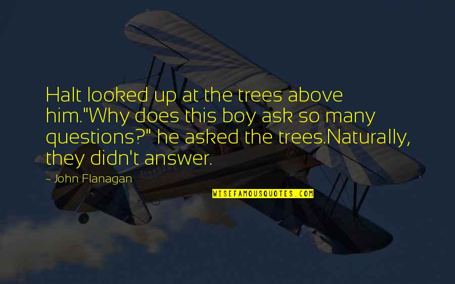 """Why Ask Questions Quotes By John Flanagan: Halt looked up at the trees above him.""""Why"""