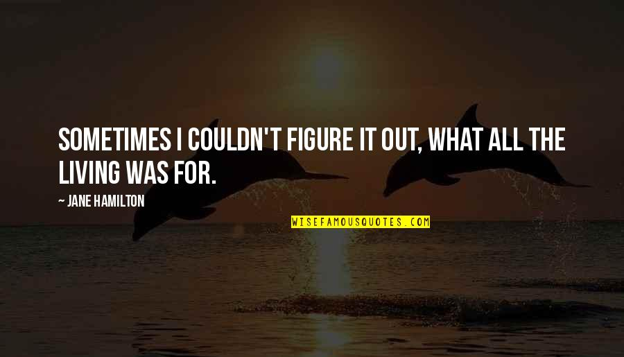 Why U Hurt Me Always Quotes By Jane Hamilton: Sometimes I couldn't figure it out, what all