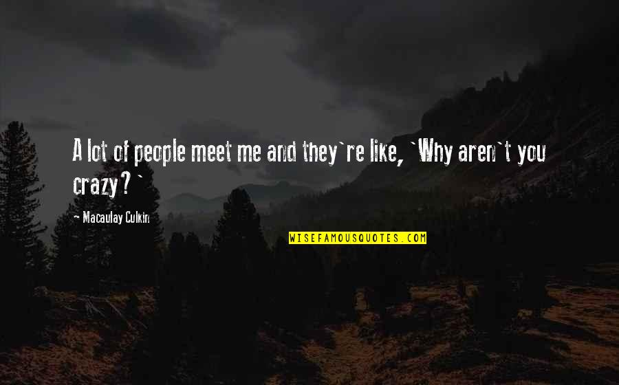 Why We Meet Quotes By Macaulay Culkin: A lot of people meet me and they're