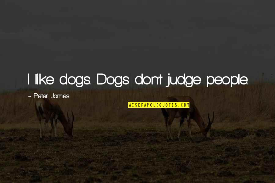 Why You Wanna Hurt Me Quotes By Peter James: I like dogs. Dogs don't judge people.