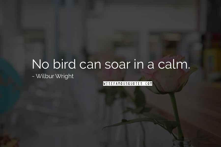 Wilbur Wright quotes: No bird can soar in a calm.