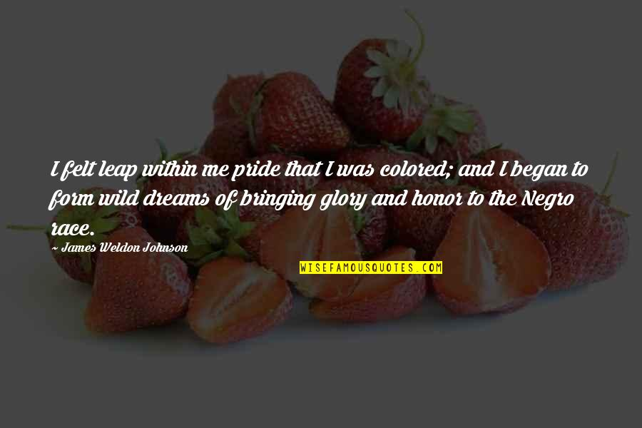 Wild Dreams Quotes By James Weldon Johnson: I felt leap within me pride that I