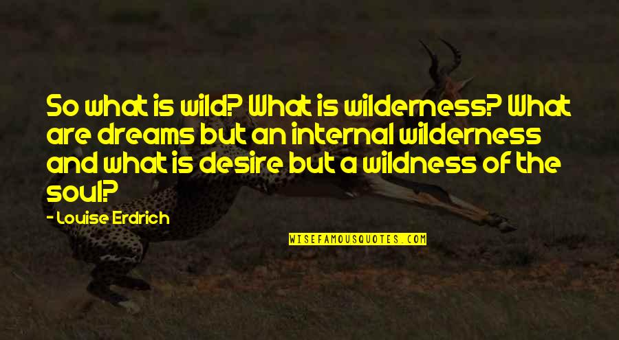 Wild Dreams Quotes By Louise Erdrich: So what is wild? What is wilderness? What