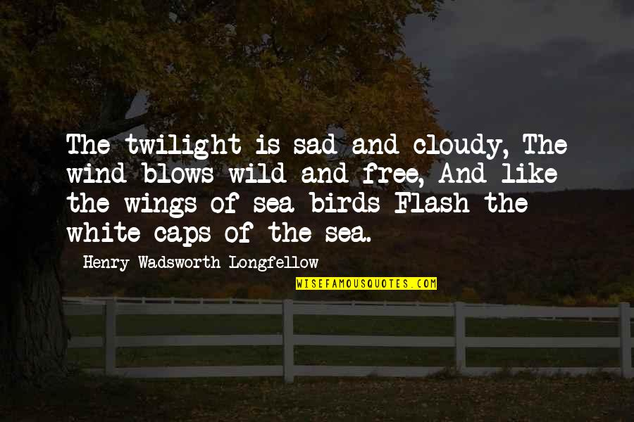 Wild N Out Quotes By Henry Wadsworth Longfellow: The twilight is sad and cloudy, The wind