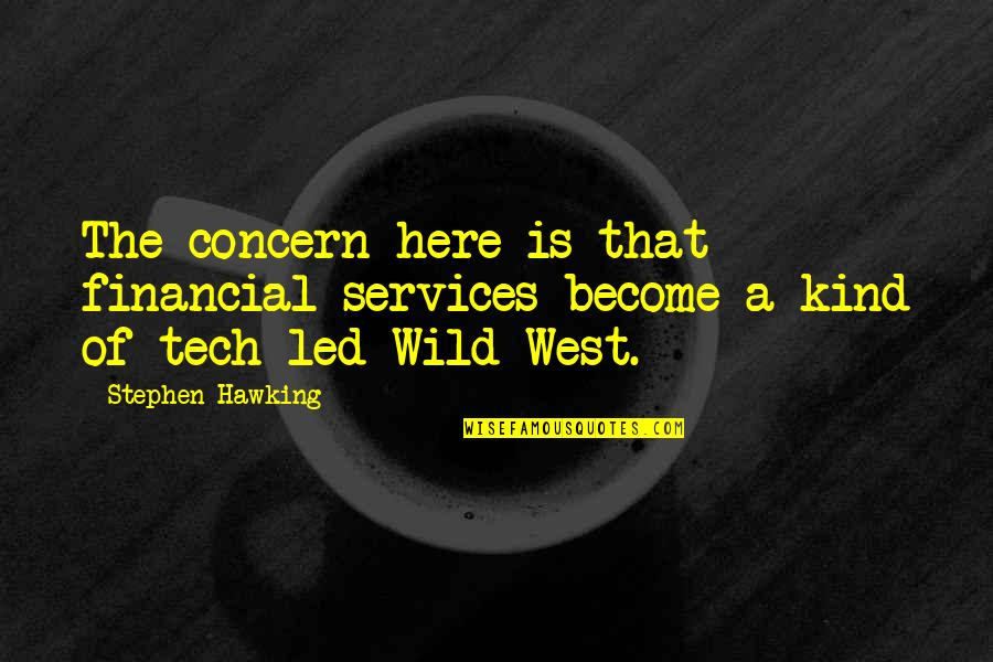 Wild West Quotes By Stephen Hawking: The concern here is that financial services become