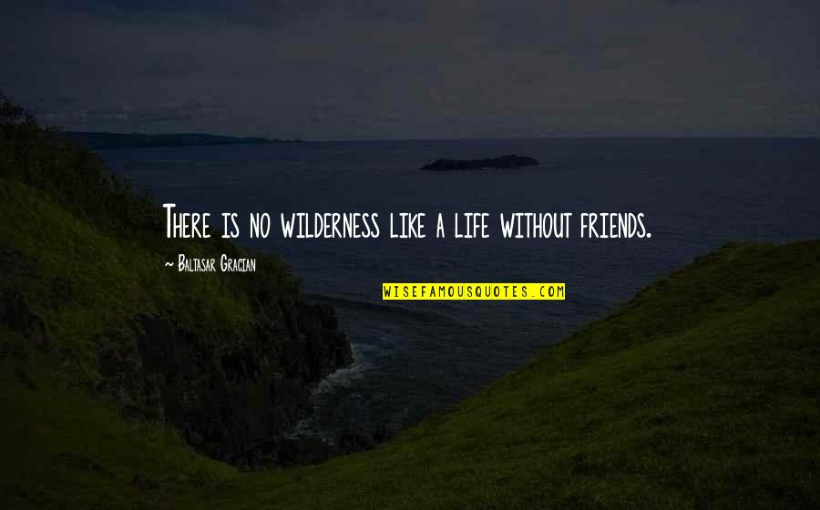 Wilderness And Life Quotes By Baltasar Gracian: There is no wilderness like a life without