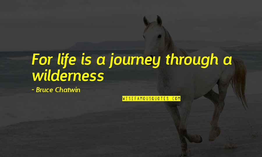 Wilderness And Life Quotes By Bruce Chatwin: For life is a journey through a wilderness