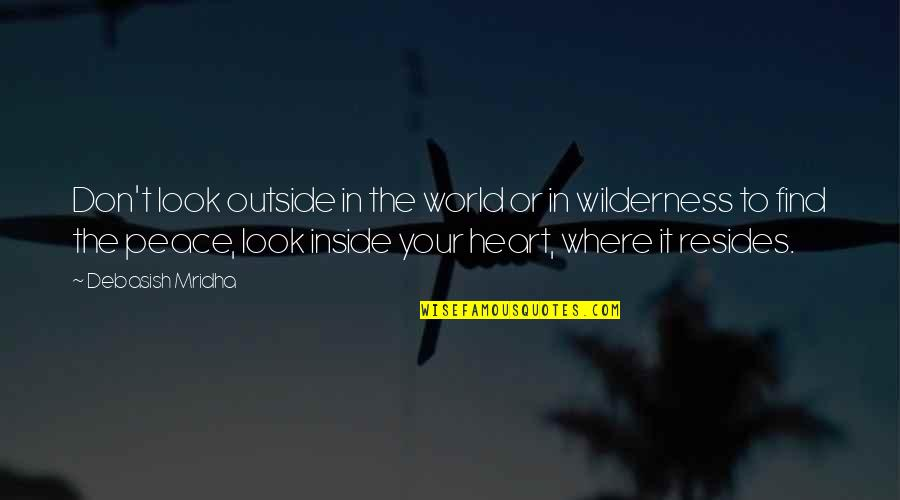 Wilderness And Life Quotes By Debasish Mridha: Don't look outside in the world or in