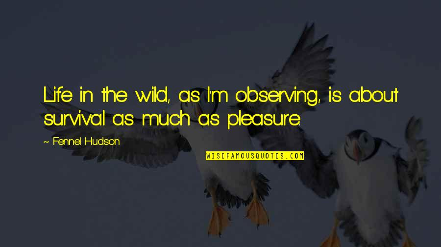 Wilderness And Life Quotes By Fennel Hudson: Life in the wild, as I'm observing, is