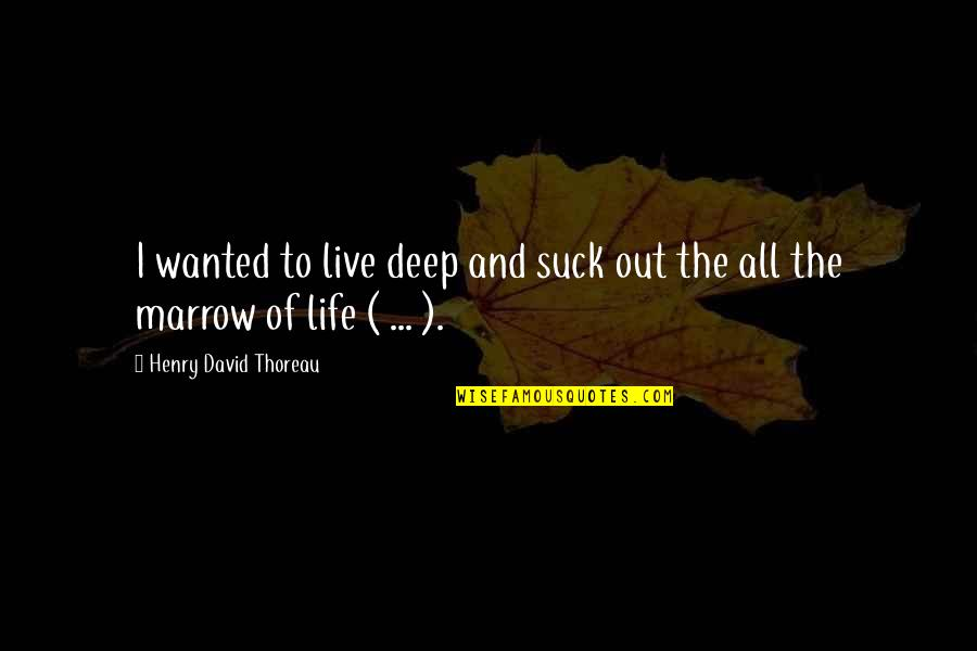 Wilderness And Life Quotes By Henry David Thoreau: I wanted to live deep and suck out