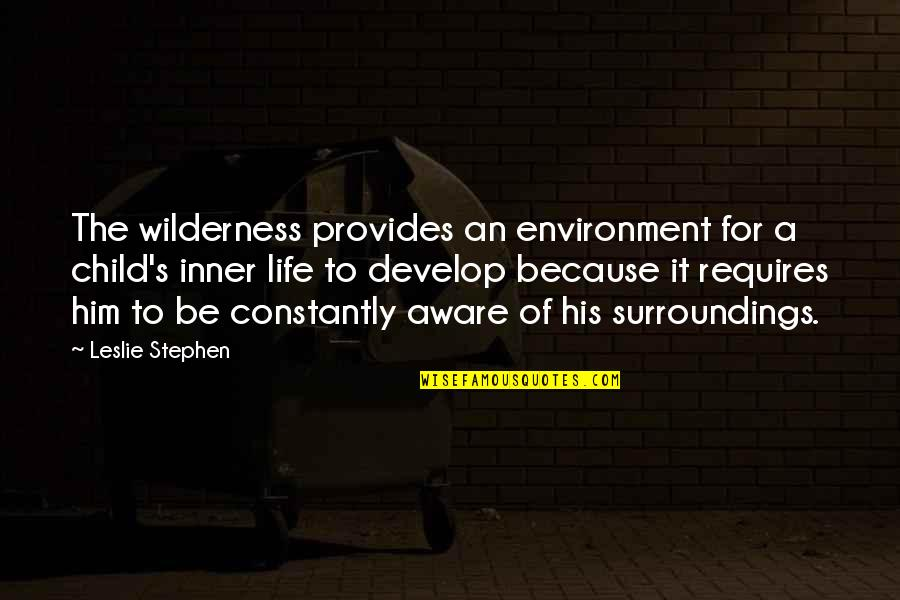Wilderness And Life Quotes By Leslie Stephen: The wilderness provides an environment for a child's