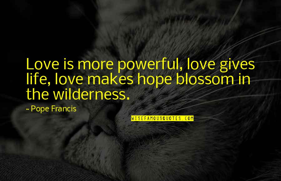 Wilderness And Life Quotes By Pope Francis: Love is more powerful, love gives life, love