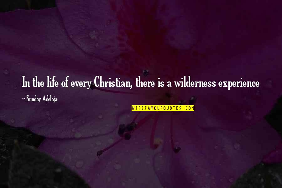 Wilderness And Life Quotes By Sunday Adelaja: In the life of every Christian, there is