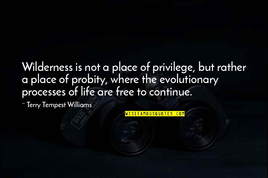 Wilderness And Life Quotes By Terry Tempest Williams: Wilderness is not a place of privilege, but
